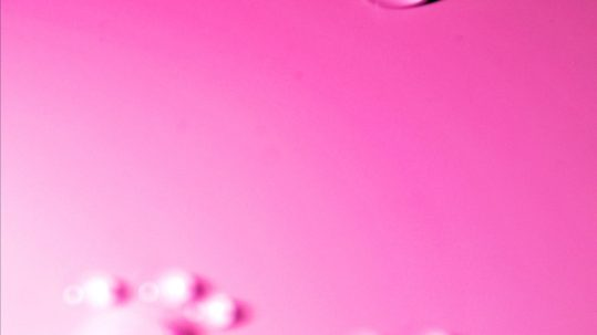 pink_panters_08