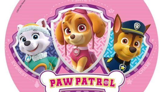 paw-patrol-patrolne-sape-02